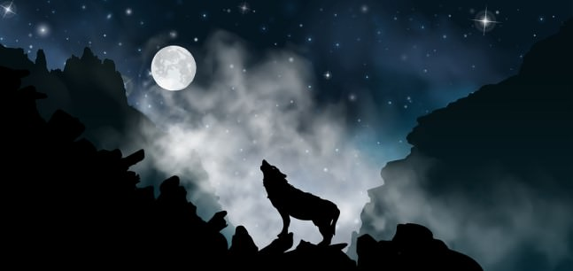 Howl at the Moon Day (and night)