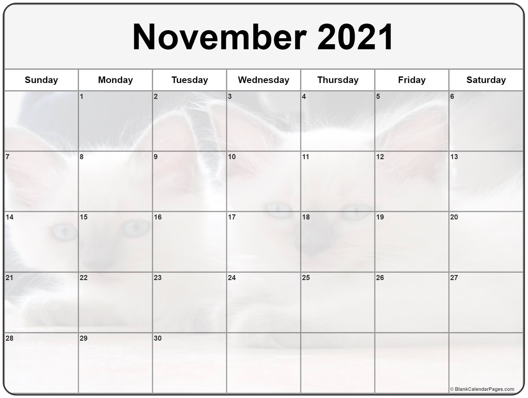 November 2020 printable calendar with cute cat filters