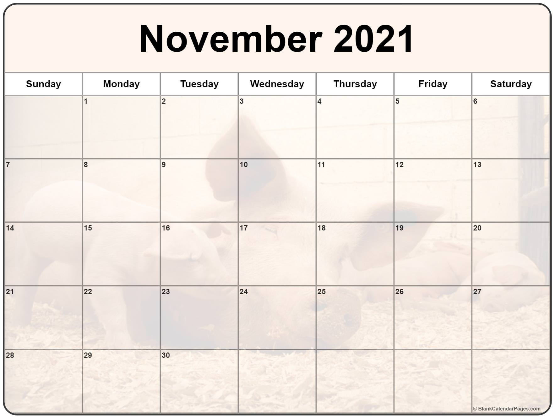 November 2020 printable calendar with cute piglet filters