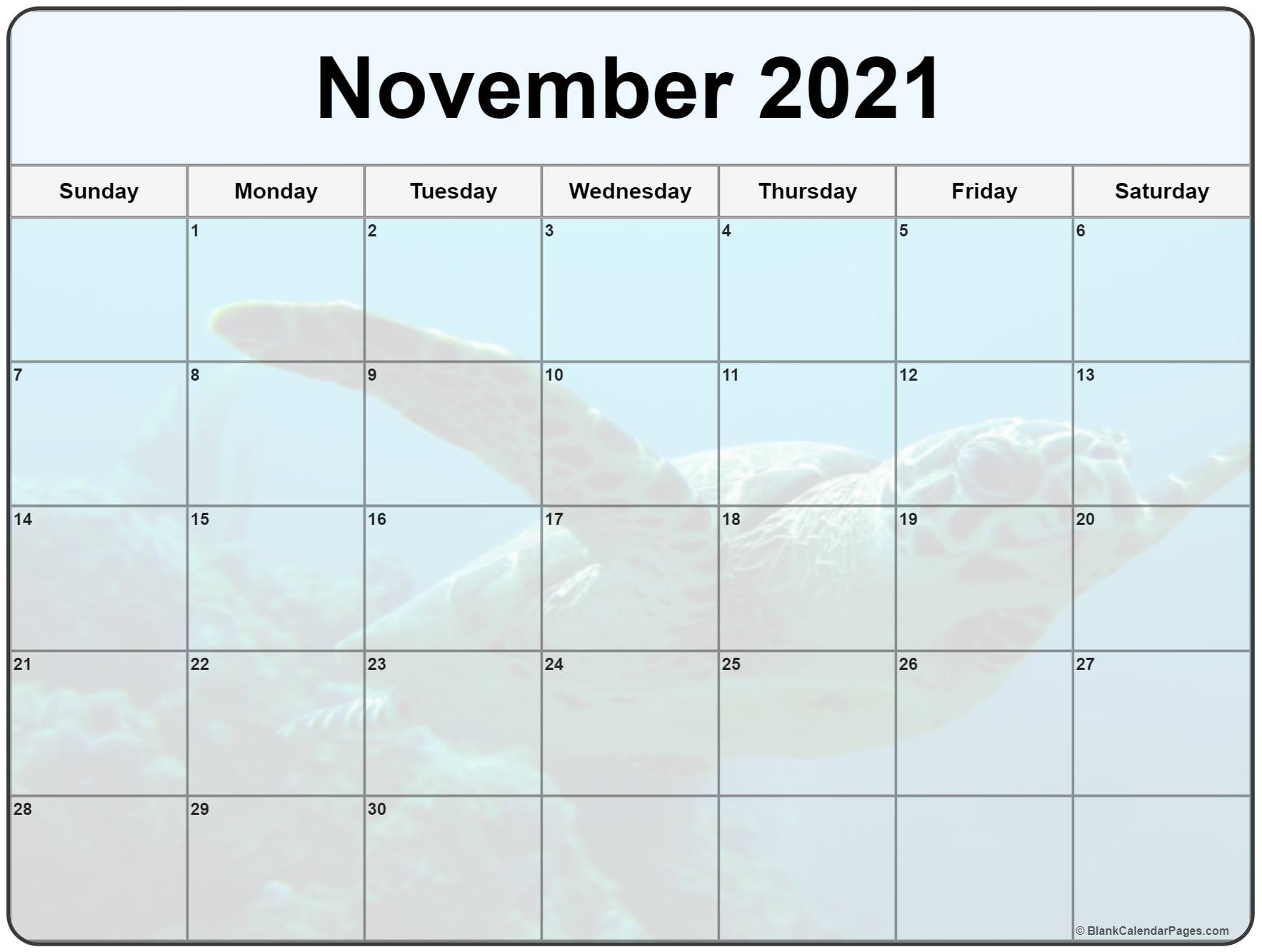 November 2020 printable calendar  with cute turtle filters
