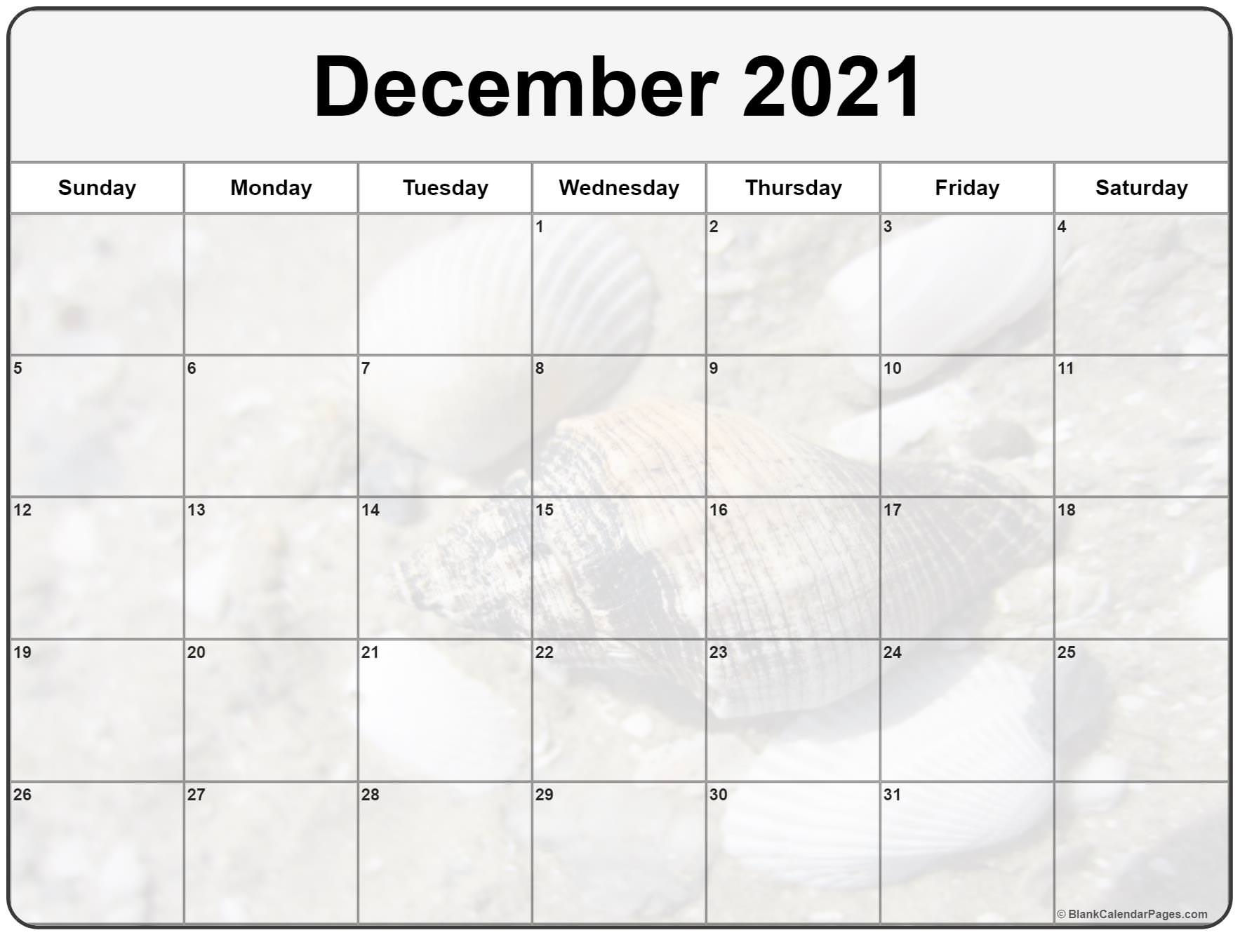 December 2021 image calendar  with cute seashells filters