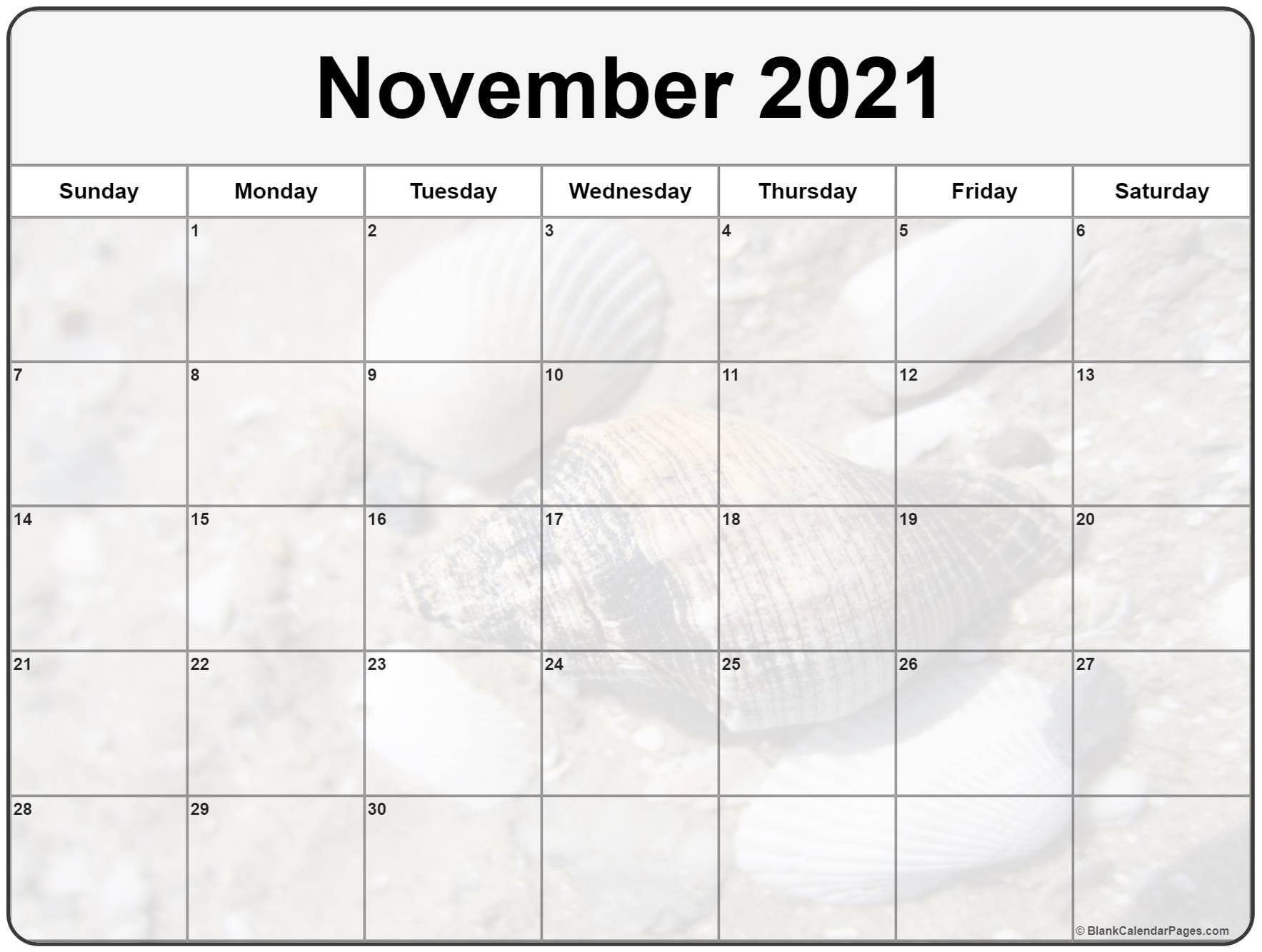 November 2021 image calendar  with cute seashells filters